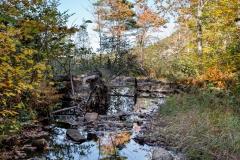 anp-tarn-trail-01-101313