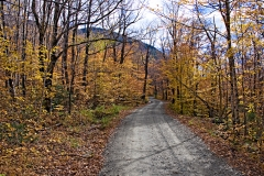 bsp-fall-road-02