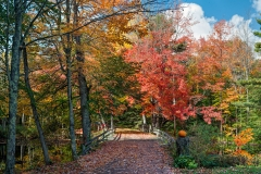 Mount Desert Island Fall