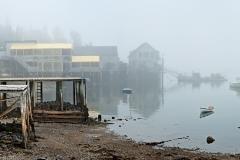 bernard-fog-001